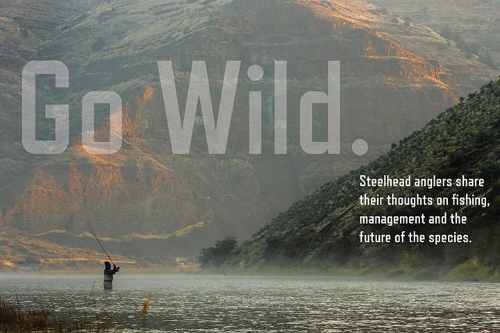 Day-1-Go-Wild-01-WEB