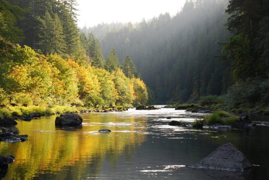 A quiet day on the North Umpqua River